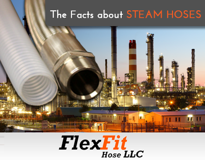 PTFE Steam Hose and Flexible Metal Steam Hose